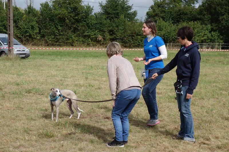 démonstration de la communication canine avec Loki et Mme Granges. Séverine et Sarah expliquent les signaux d'apaisement.