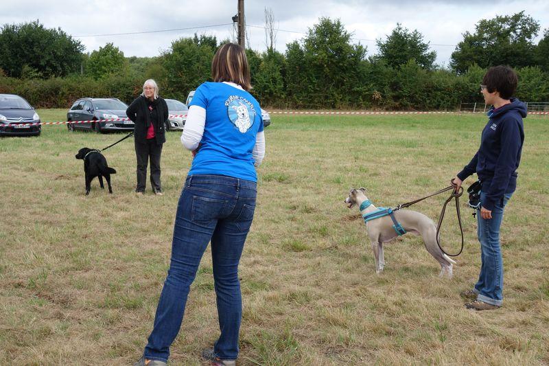 Boléro, le chien de Elyane Sommer, est venu nous aider pour la démonstration sur la communication canine