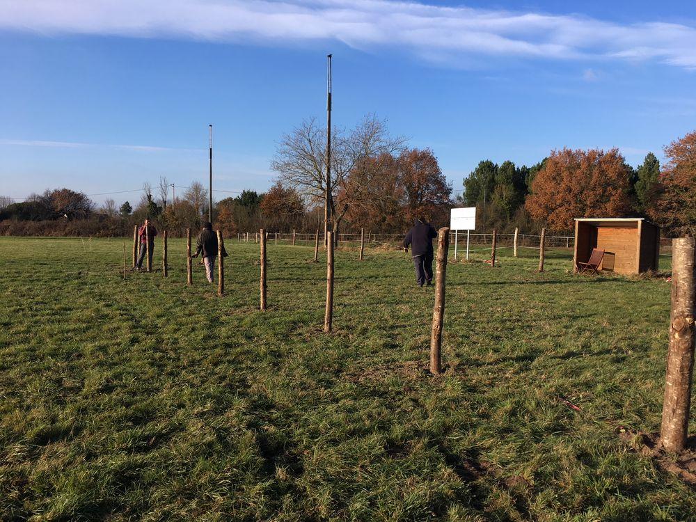 Poteaux en train d'être plantés pour le cours école du chiot pendant la journée travaux