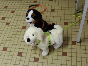 Nougat et Reglisse, chiens en peluche pour illustré l'intervention